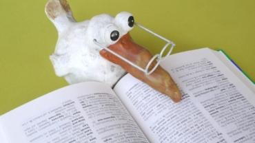 Pourquoi accorder de l'importance au champ lexical en rédaction SEO ?